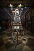 Christmas Tree - Brisbane Arcade by noompty