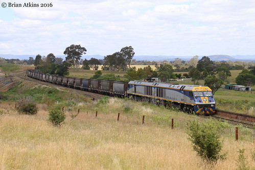 IMG_8589 EL57 EL56 Gillieston Heights AS166 17.11.16_1