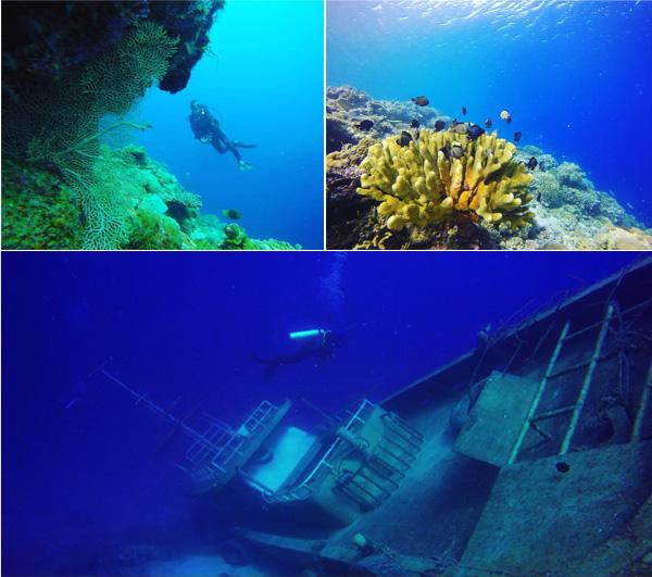 underwater morotai 4
