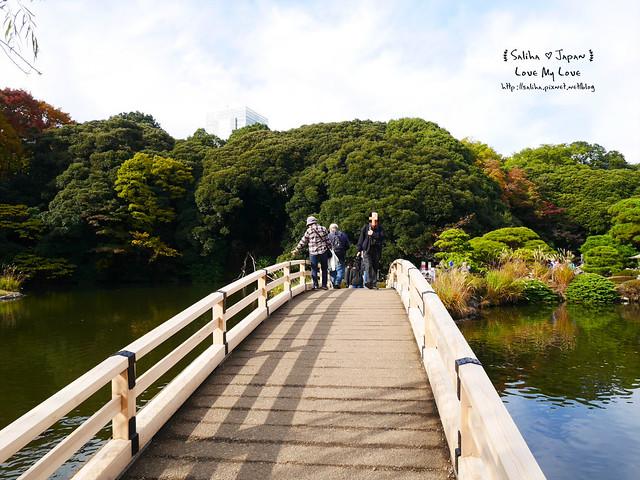 日本東京自由行新宿御苑庭園景點 (19)