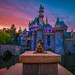 Rabbit and the Castle during Twilight Hour