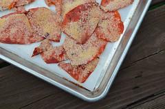 Tomato Salt v2