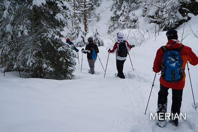 Berner Oberland: Meiringen