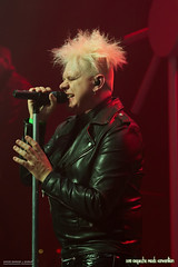 2015 Depeche Mode Convention