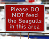 Sensible signage 1580 by Tony Withers photography