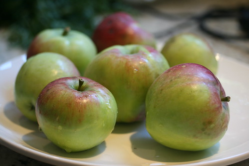 apples IMG_3545