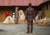 Benin, West Africa, Porto-Novo, zangbeto guardian of the night spirit dance in the royal palace by Eric Lafforgue