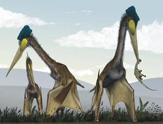 old-dinosaur023