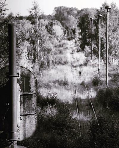 #black #train #thüringen #turingia #rails #schienen #old #leaves