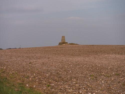 Trigpoint in field, Warden Hill