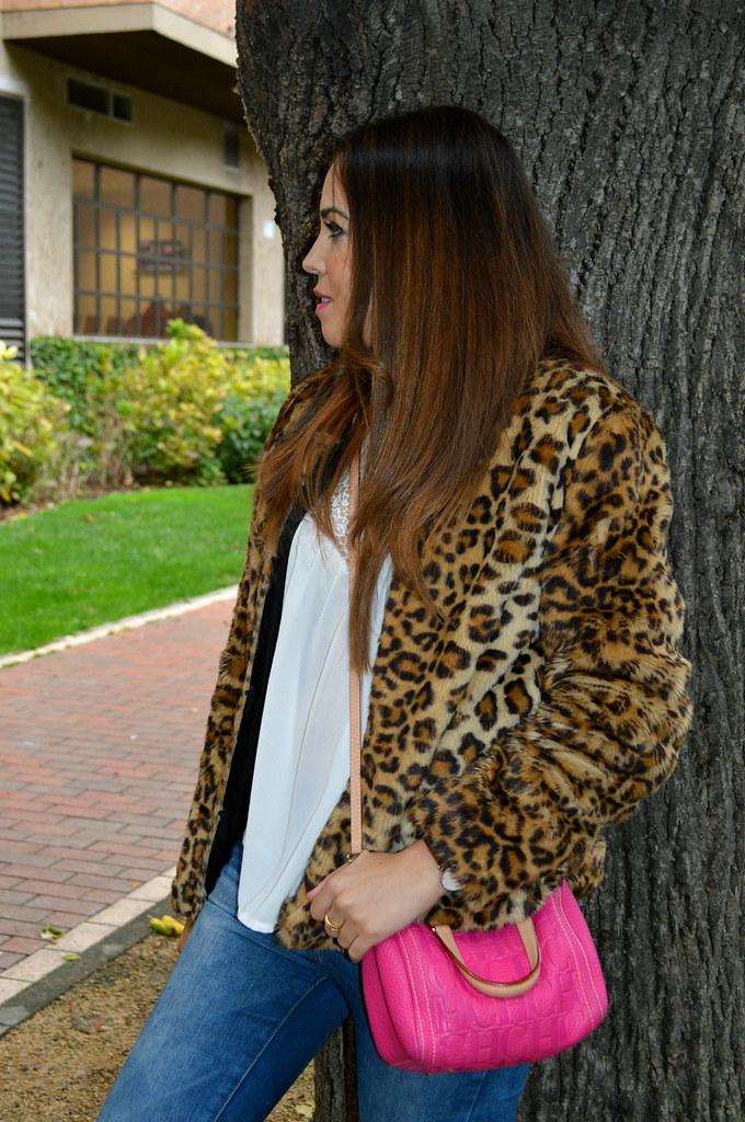 Perfil_Blogger