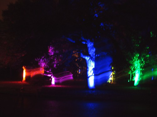 Botanic Lights (11)