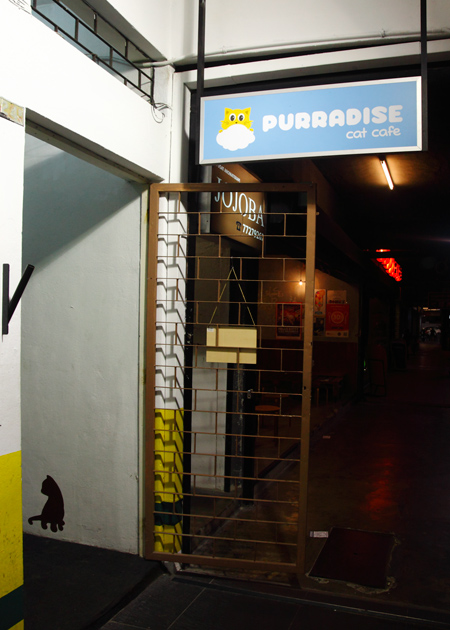 Purradise Cat Cafe Entrance