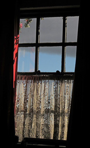 Lace curtains in Johnnie Fox's Pub just outside of Dublin, Ireland