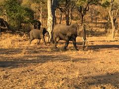 Malawi 2016❤️