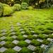 Zen Gardens of Tōfuku-ji in Kyoto City, Japan. by KyotoDreamTrips