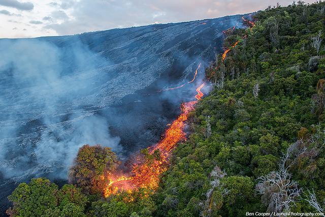 Lava destroys forest