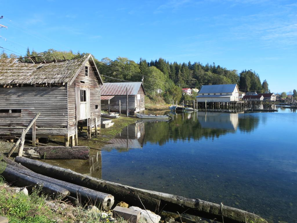 Nest Bed And Breakfast Port Mcneill Bc