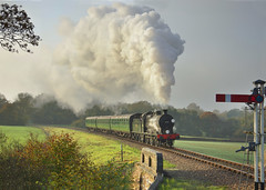 30541 Charter Bluebell Railway 2/11/15