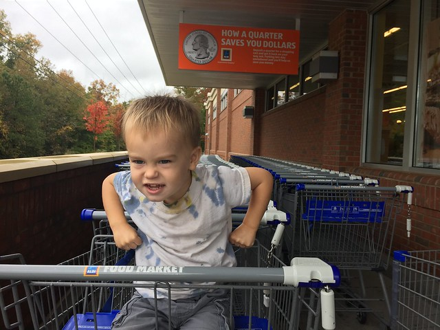 Why we love to shop Aldi and how we save.