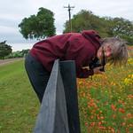 Texas Wildflowers Workshop_2015_participants