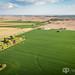 Aerial - Farmland
