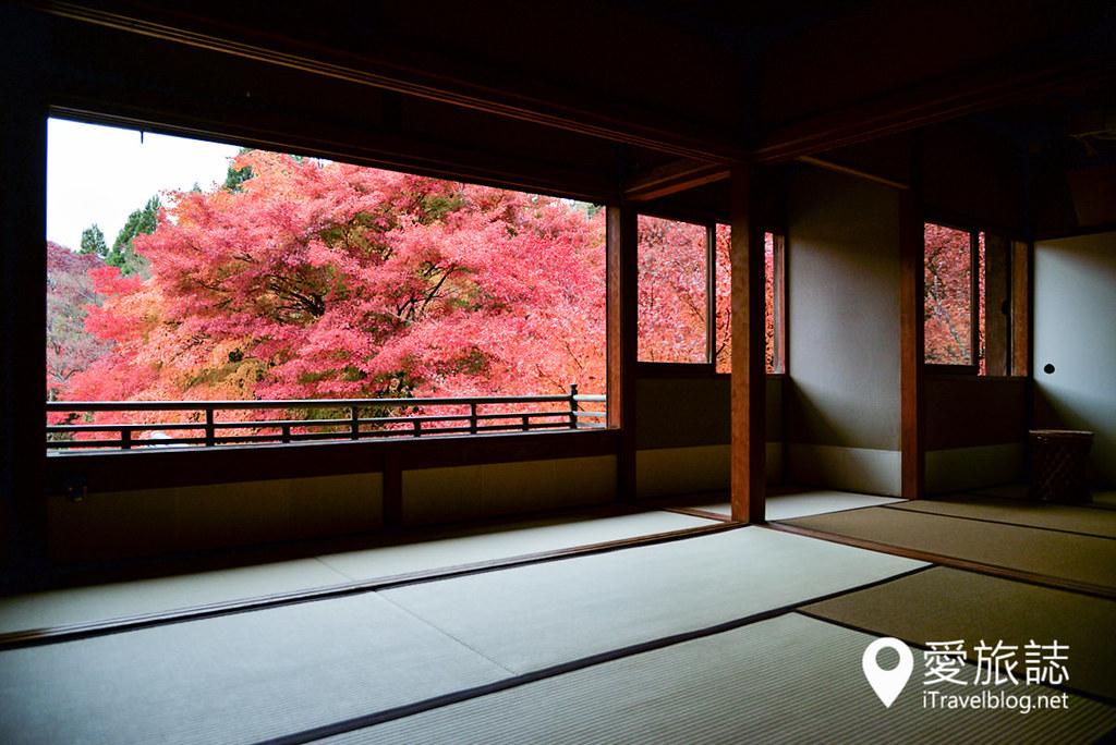 京都赏枫景点 琉璃光院 11