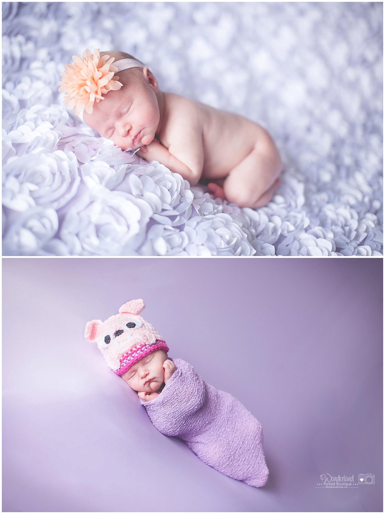 Newborn Poses Bull Dog Crochet Hat