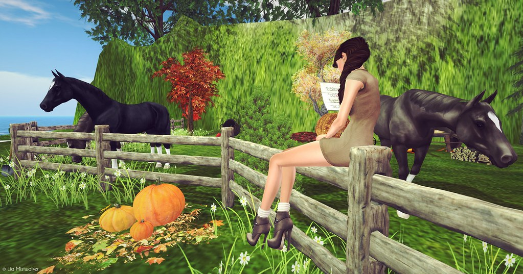Fashion Therapy LOTD # 102