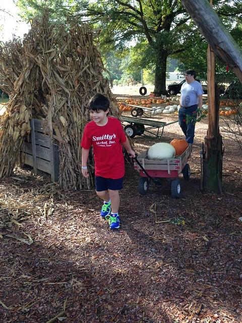 Williams Orchard, Trussville AL