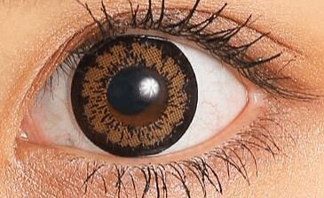 candymagic_1day_kingbrown_eye