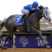 Liam's Map wins the Breeders' Cup Dirt Mile