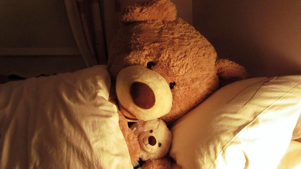 Cuddle Up