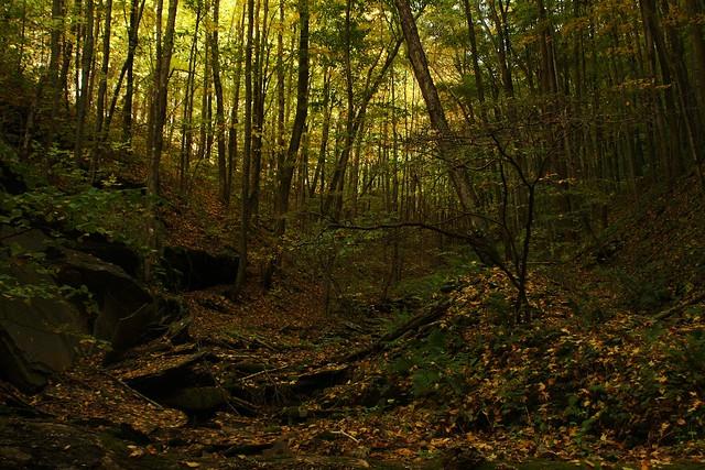 Golden Eagle Trail, PA