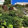 """Athens Avalon Green Space"", San Francisco, staircase"