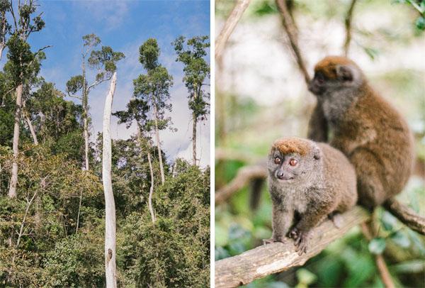 RYALE_Madagascar_Blog2_021