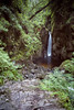 Stanley Ghyll Force by yourfriendian