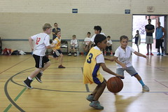 sports, competition event, team sport, player, basketball player, ball game, basketball, tournament,