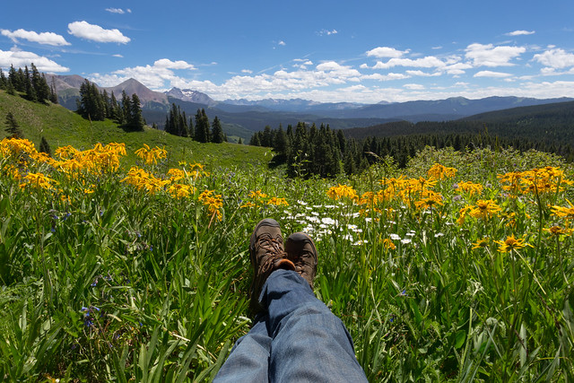 Traveling Boots - Colorado Meadow