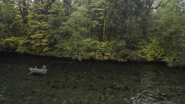 guided fly fishing trip eugene oregon