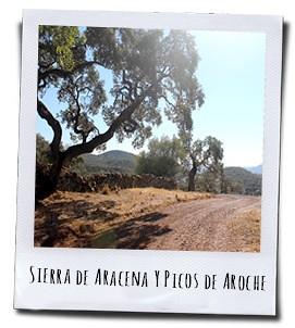 Met een uitgebreid netwerk van wandelpaden is het heel makkelijk om de Sierra te voet te verkennen