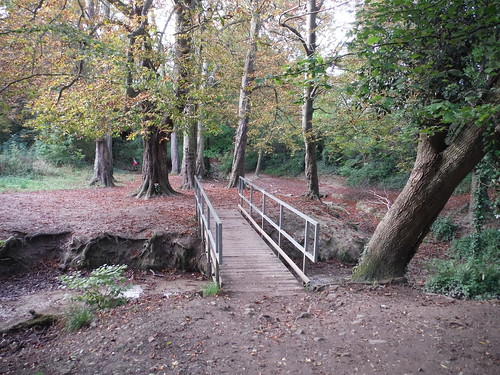 Footbridge over stream, Barton Hills
