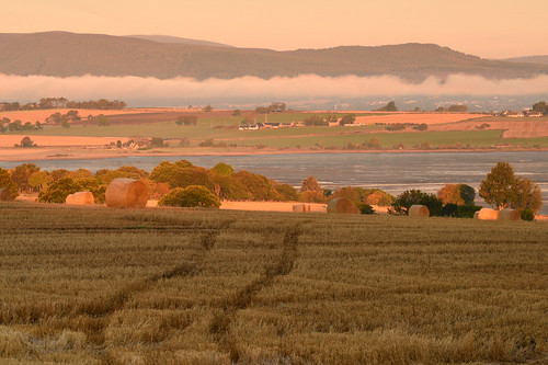 light cloud mist black water field barley yellow clouds sunrise landscape gold dawn golden bay scotland highlands peace outdoor farm hill farming harvest peaceful hills fields serene hay agriculture bales cromarty isle cultivation blackisle haybales scottishhighlands kirkmichael cromartyfirth balblair udale farness