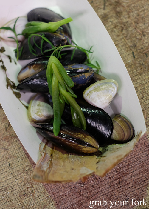 Pipis and mussels cooked in the Aboriginal earth oven at Rootstock Sydney 2015