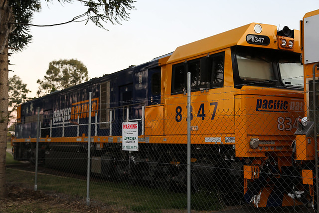 Pacific National Loco 8347