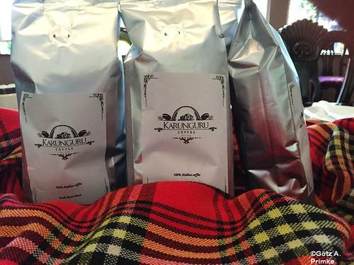 afrika kenia karungurucoffeeplantation