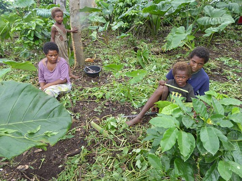 The majority of Ni-Vanuatu depend on subsistence farming  and will be increasingly left behind in their human development unless they can promote their way of life through tourism.