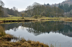 The River Brathay, Cumbria
