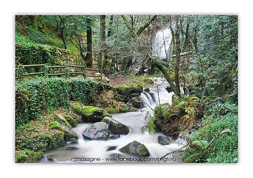 #bestplace #bestmoments #naturalpark #naturelovers #riverscape #landscapephotography #landscapelovers #portugalemfotos #portugalalive #shoots_pt #ig_portugal #aveiro #severdovouga #portugal_de_sonho #photowalk