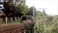 TGV BORDEAUX LILLE
